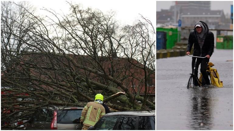 الرياح الشديدة تتسبب بتكسير الأشجار وارتفاع منسوب المياه في روتردام وما حولها