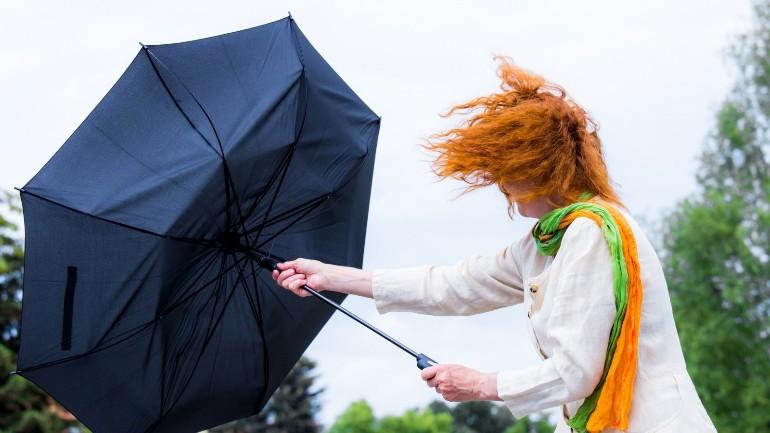 ستواجه هولندا طقس عاصف يوم الثلاثاء: رياح شديدة مع زخات مطرية