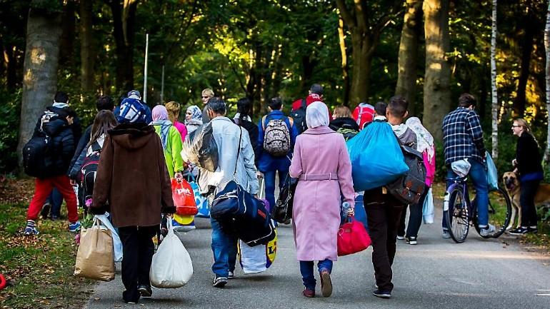 زاد عدد اللاجئين الواصلين من سوريا في العام 2019 بمقدار 700 شخص عن العام 2018