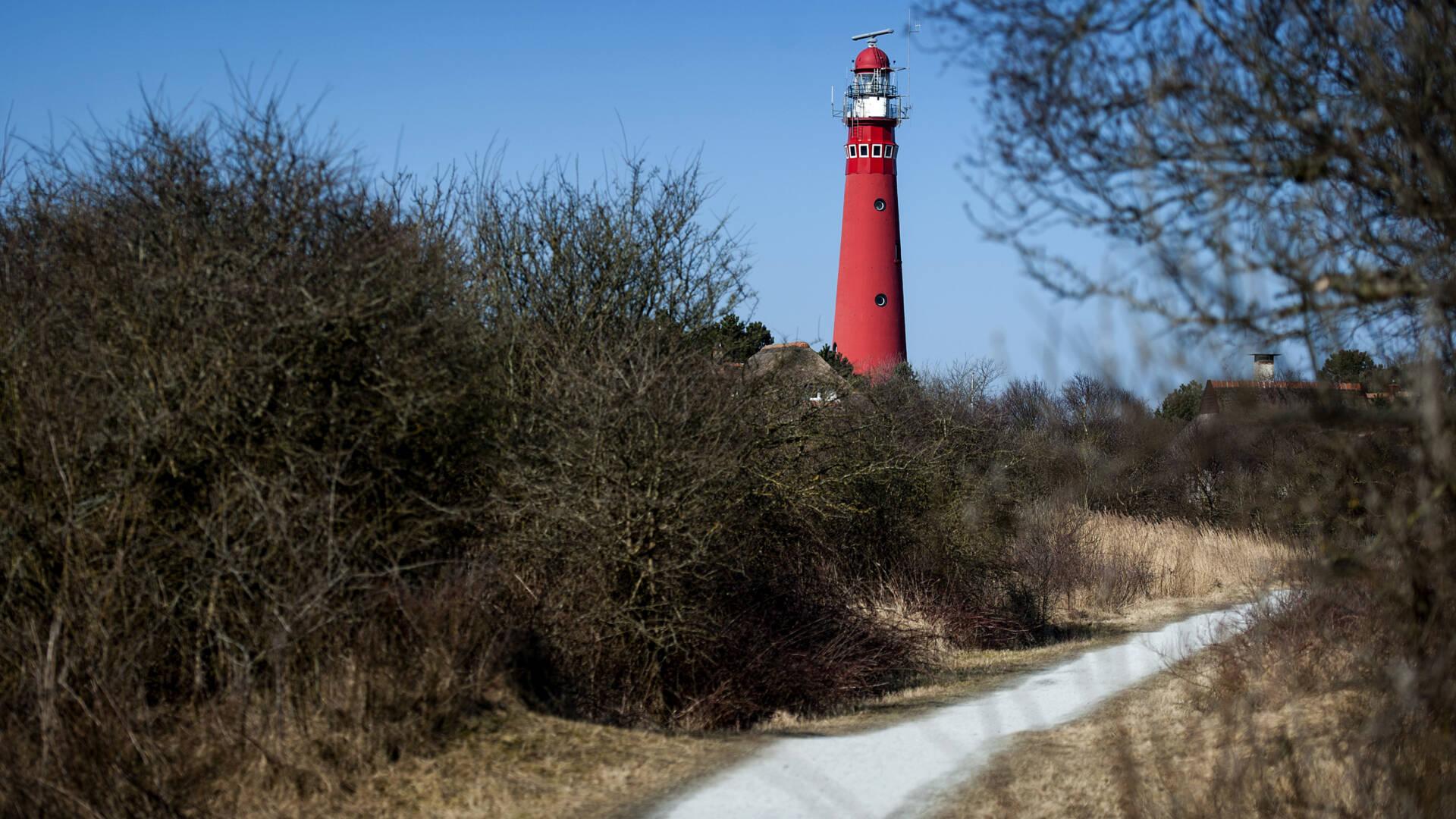 اكتشاف أول إصابة بكورونا في جزيرة Schiermonnikoog الهولندية
