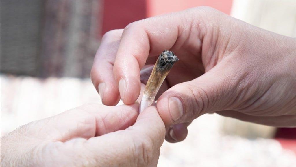 تدخين السائقين للحشيش خلف عجلة القيادة يؤدي إلى الخطر ويدوم تأثيره لساعات