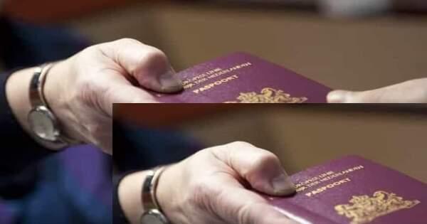 23 ألف لاجئ سوري حصلوا على الجنسية الهولندية