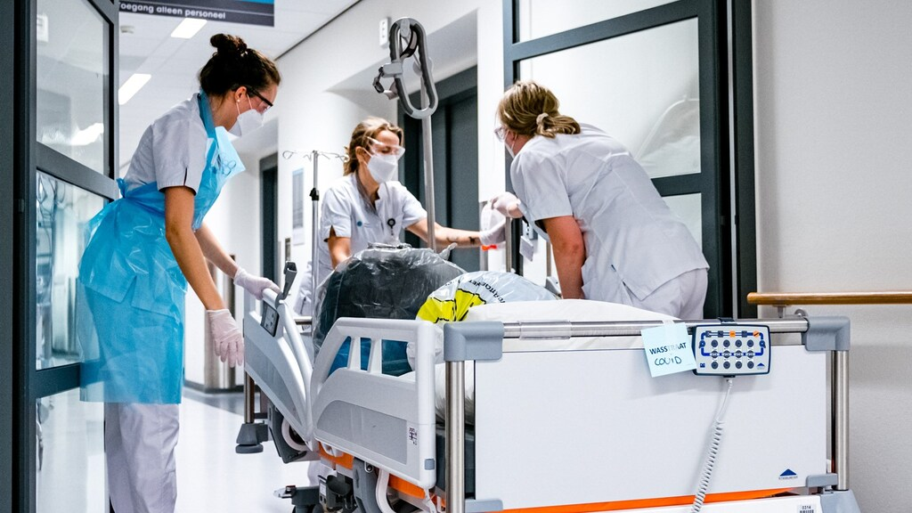 أرقام كورونا اليوم، هولندا تتبرع بـ 50 جهاز أكسجين لسورينام
